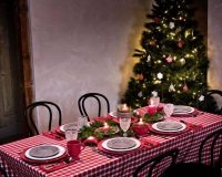 red and white checkered tablecloth,gray plates with snowflakes,table centerpieces made of branches,traditional table setting ideas,natural holiday decorating ideas,