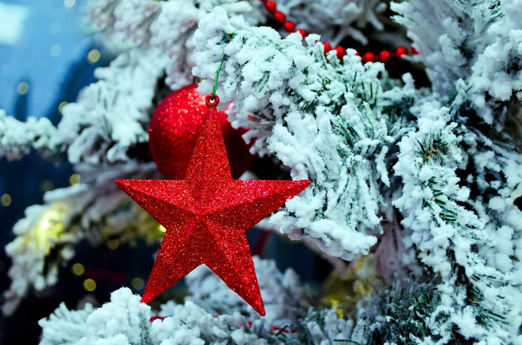 Christmas star,star,Christmas decoration ideas,creative ideas for Christmas decorations,Christmas living room ideas,Christmas bedroom decor,Christmas tree decorations ideas,Christmas tree ideas,white and red Christmas tree decorating ideas,red white gold Christmas tree,Christmas tree decorations,red and white themed Christmas tree,holiday decorating ideas,holiday decor inspiration,festive holiday decor,holiday decorations,decoration ideas,home decor ideas,interior decorating,