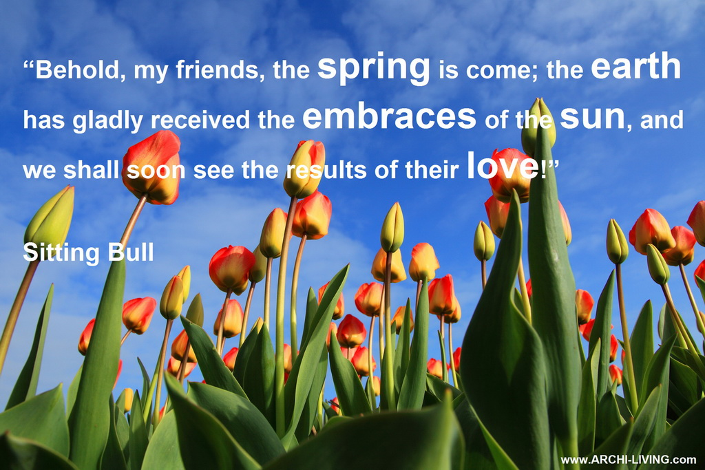 The joyful colors of spring inspirational quotes and lovely naturespringspring gardenspring landscapeflower gardenskyflowers mightylinksfo