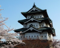 japanese traditional architecture,image castle japan,sakura flowers images,
