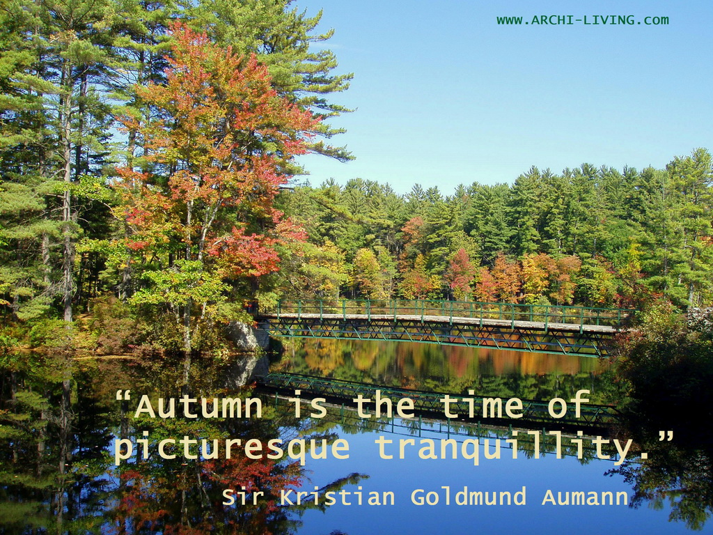 Nature quotes,Sir Kristian Goldmund Aumann quotes,autumn inspiration,autumn sayings,autumn quotes,seasons quotes,quotes,inspirational quotes,motivational quotes,positive quotes,quote of the day,best quotes,famous quotes,photo quotes,beautiful quotes,autumn,autumn landscape,autumn scenery,autumn garden,autumn woods,autumn leaves,autumn leaves colors,red autumn leaves,green autumn leaves,autumn trees,