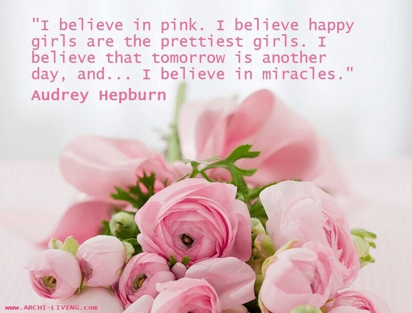 i believe in pink audrey hepburn quote,audrey hepburn quotes about happiness,famous quotes by actresses,color pink quotes and sayings,pink roses images photos,