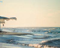 sun loungers,parasol,outdoor furniture,ego paris,garden design,design,garden furniture,outdoor design,neutral color palette,blue sky,blue sea,beach holidays,sandy beach