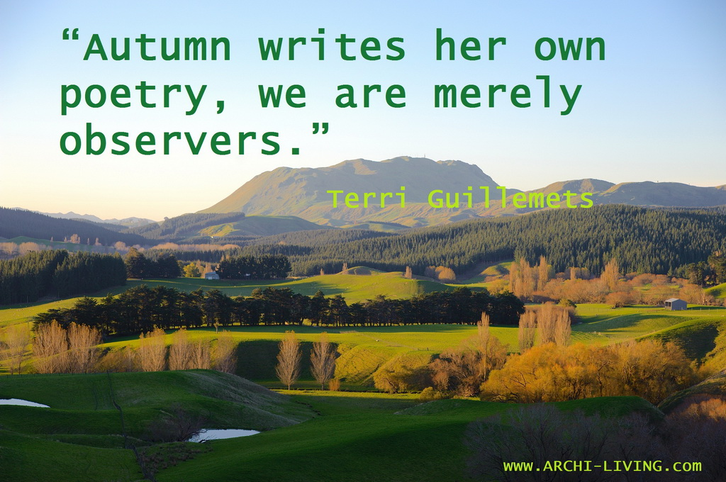 Nature quotes,Terri Guillemets quotes,autumn inspiration,autumn inspiration quotes,autumn sayings,autumn quotes,seasons quotes,quotes,inspirational quotes,inspirational autumn quotes,motivational quotes,positive quotes,quote of the day,best quotes,famous quotes,photo quotes,beautiful quotes,autumn,autumn landscape,autumn scenery,autumn garden,autumn woods,autumn leaves,autumn leaves colors,red autumn leaves,green autumn leaves,autumn trees,