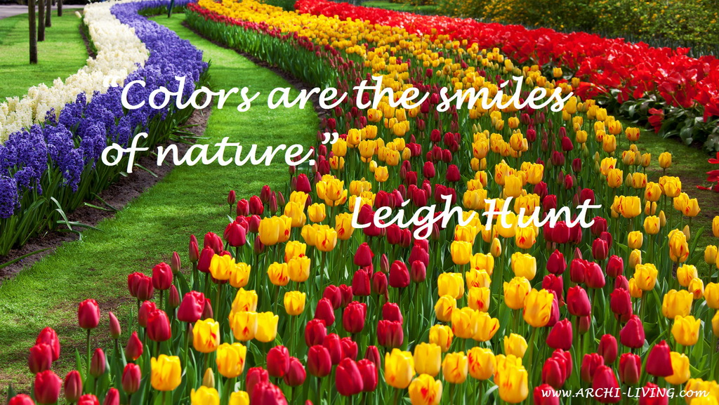 The Joyful Colors Of Spring Inspirational Quotes And