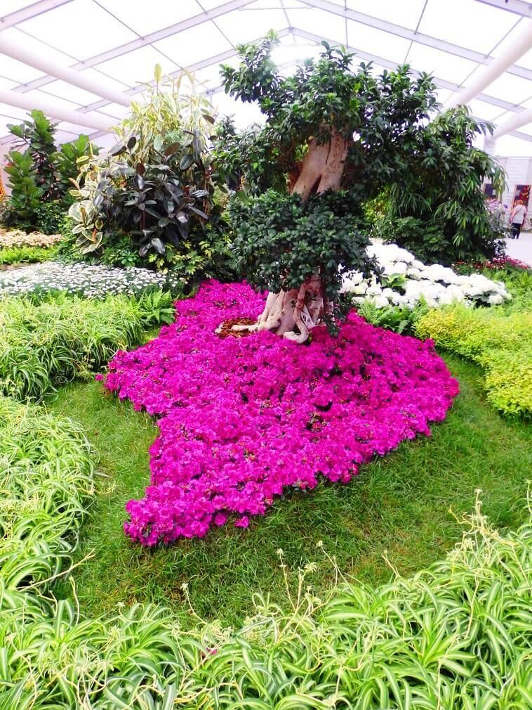 garden show europe croatia,tree surrounded by flowers,bundek park zagreb,landscape design croatia,floraart garden croatia,