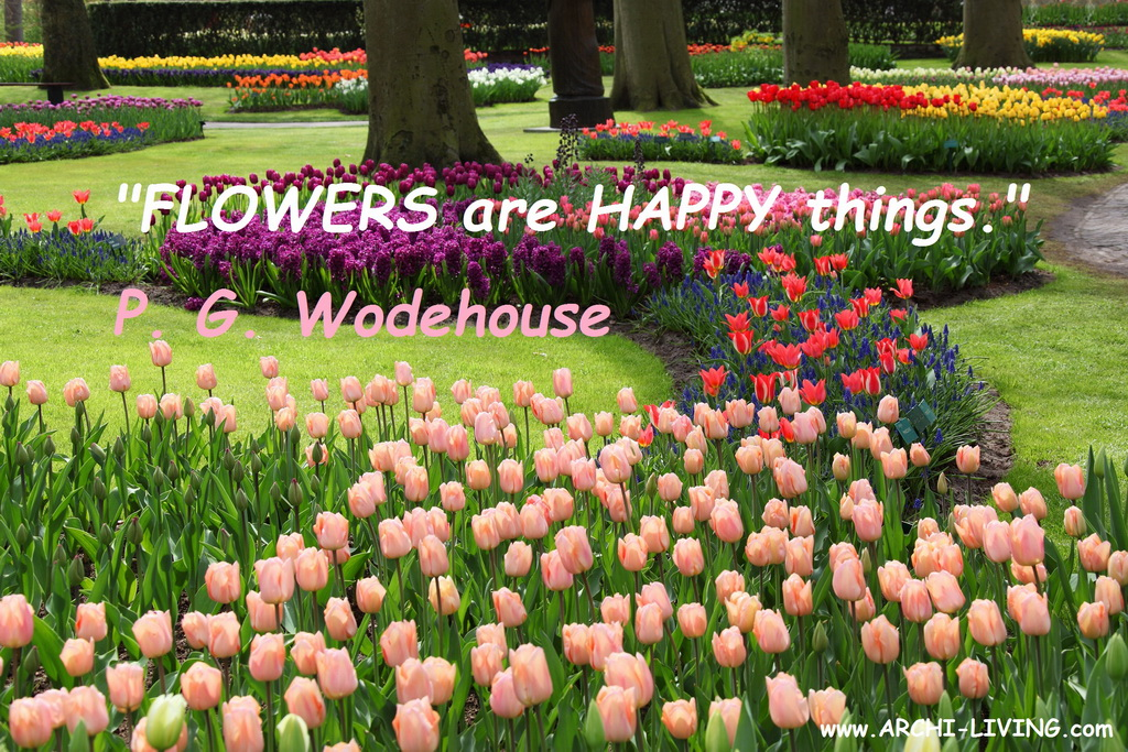 C_colorful_flowers_in_keukenhof_garden_quote_P-G-Wodehouse_Archi-living_resize.jpg