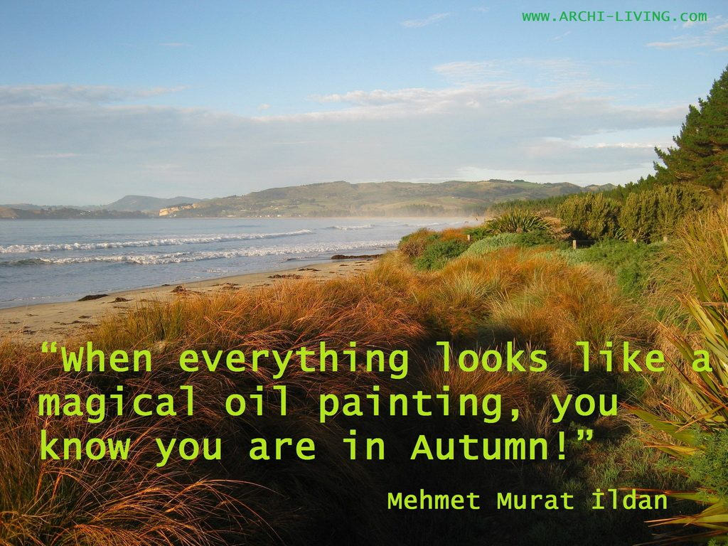 Picturesque And Colourful Autumn Quotes Archi Living