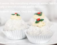 elizabeth camden quotes until the dawn,snow inspired desserts images,motivational winter quotes,snow quotes love,snow inspired food,