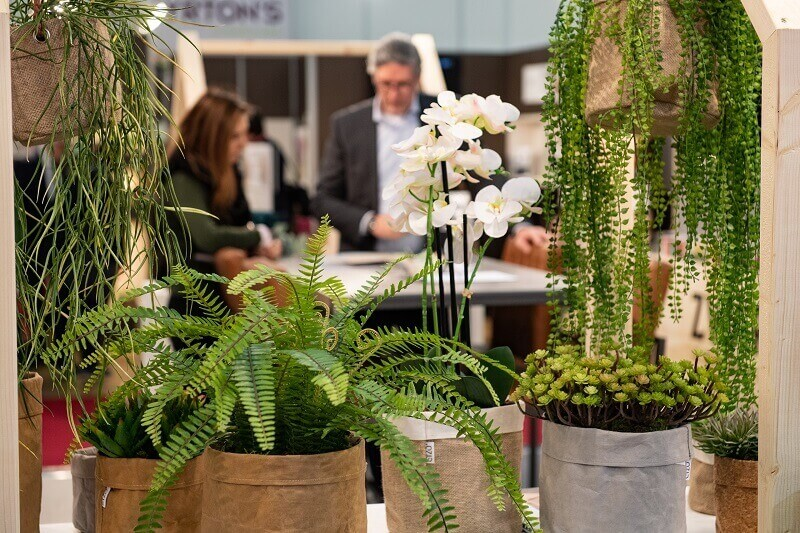 how to decorate your home with plants,orchids as Christmas decorations,decorate your apartment with plants,flowers for holiday orchids,holiday decorating trends,