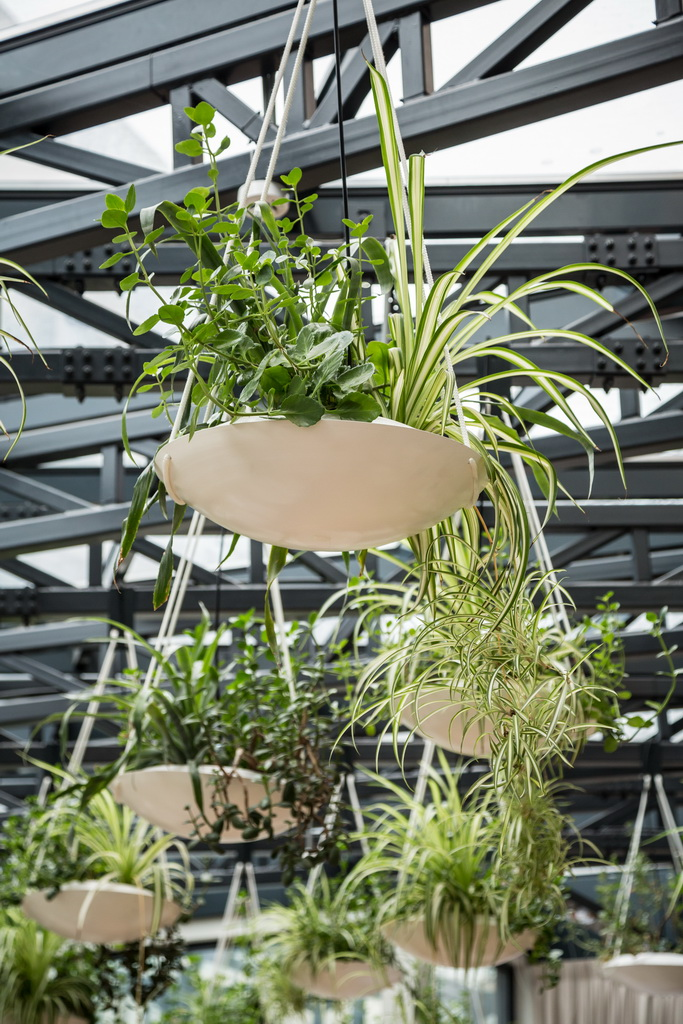 hanging plants in ceiling,plants on the ceiling,berthelot hotel bucharest romania,high end restaurant design,indoor plants in pots,