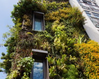 vertical garden hotel design ideas,green wall plants outdoor designs,feng shui five elements theory,