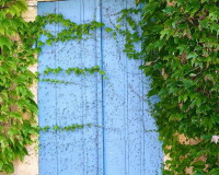Blue Window Shades, Window Shutters, Blue Color, France, French Architecture, Green Color, Landscape Design, Garden Design