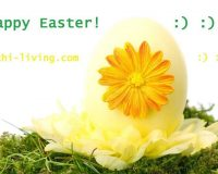 happy Easter wishes in english,Easter decorations ideas,Easter greetings cards,happy Easter greetings images,Easter eggs decoration,