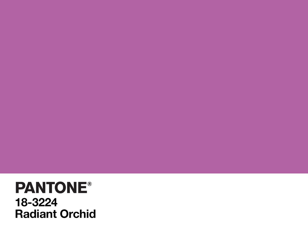 L_Radiant_Orchid_Pantone_Color_of_the_Year_2014_Archi-living_resize.jpg