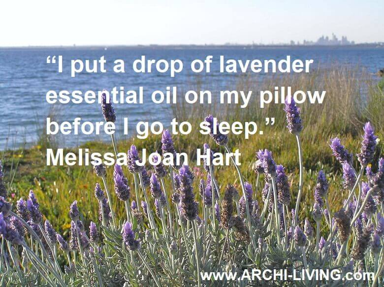 lavender quotes images,lavender quotes famous,relaxing colors for bathroom,