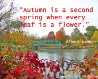 Nature,autumn quotes,quotes,Nature quotes,autumn photo quotes,photo quotes,park in autumn,autumn scenery,landscape,outdoor,beautiful garden,exterior design,landscape design ideas,garden architecture,beautiful garden ideas,beautiful garden design,exterior design ideas,