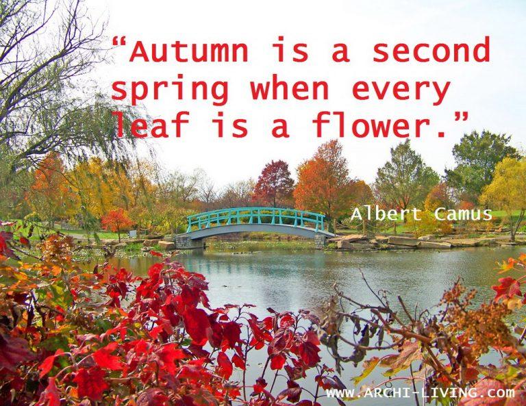 NASLOVNA_monet_bridge_in_park_in_autumn_landscape-design_quote_Archi-living_resize.jpg