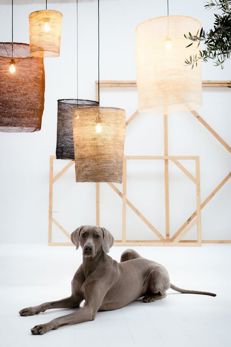 lighting made from natural materials,eco friendly products for home,ecological lighting solutions,organic lighting systems,organic lamp shades,