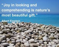 albert einstein quotes about nature,inspirational quotes by famous personalities,nature joy quotes,photography quotes about nature,pebbles and seashore,