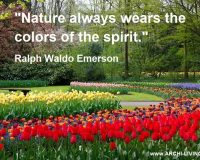 nature always wears the colors of the spirit,ralph waldo emerson quotes nature,colors of nature quotes,photo quotes colors nature,keukenhof gardens lisse netherlands,