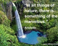 aristotle quotes nature,marvelous nature quotes,bridal veil falls new zealand,beautiful waterfalls in the world,quotes by famous philosophers,