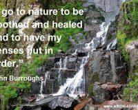 i go to nature to be soothed and healed and to have my senses put in order,john burroughs quotes,i go to nature quote,photo quotes nature,beautiful waterfall scenery images,