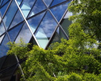 metal element feng shui colors,modern architecture buildings,tree and glass building design,