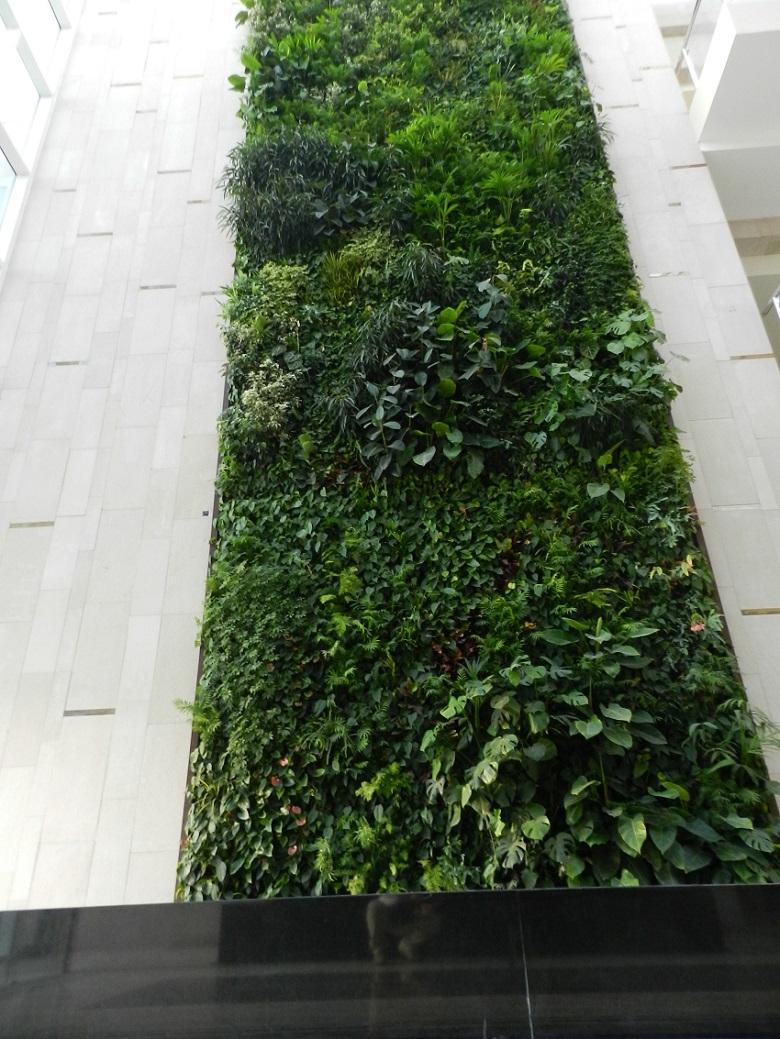 Sharjah Golf Club,golf clubs,golf club design,Sundar Italia,vertical garden,vertical garden ideas,vertical garden design,vertical flower garden,garden design,design,designer,designers,garden flowers,