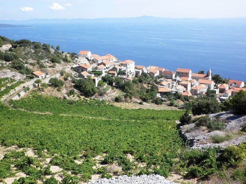 sveta nedjelja hvar,adriatic islands croatia,dalmatian vineyards,view of the vineyards,hvar dalmatia croatia,