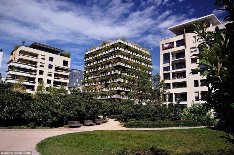 Vertical Gardens Five Stunning Designs Archi Living Com