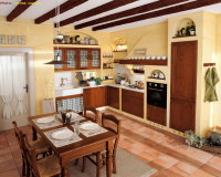 earth element feng shui colors,wood cabinets kitchen,yellow walls kitchen,