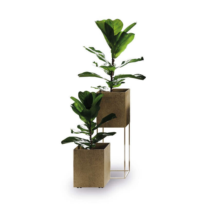 metal pots for flowers,indoor plant stand ideas,interior decoration flower pots,interior pots for plants,designer pots and planters,