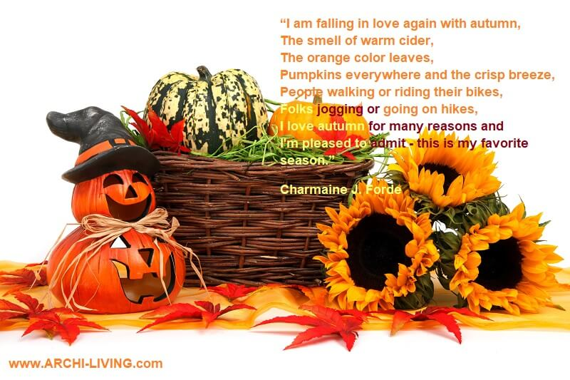 photo quotes about colors of autumn,inspirational quotes on colours,charmaine j forde quotes,sunflowers and pumpkins images,photo quotes about autumn and love,