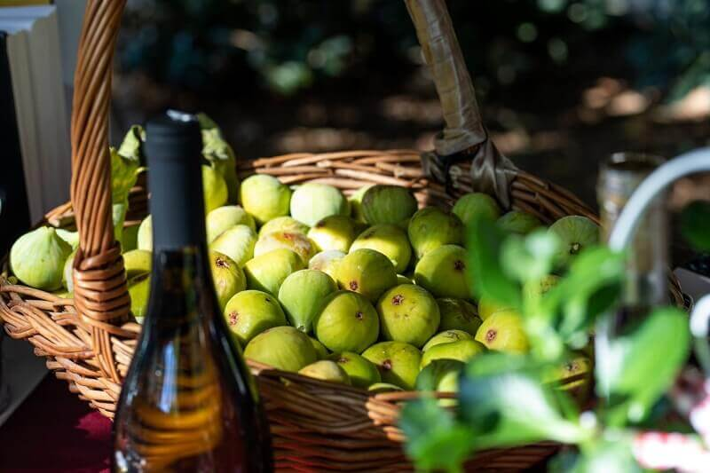 gastro events krk,fig days,food events ideas,what to do in krk croatia,fig fruit events,
