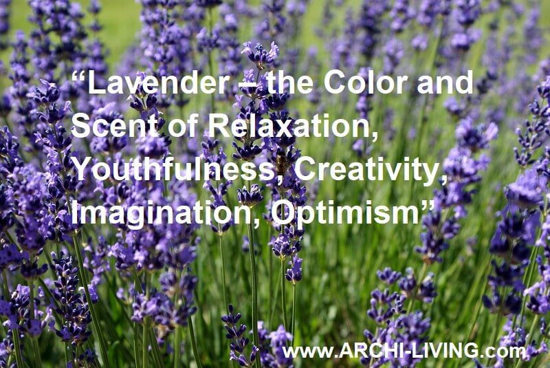 lavender color relaxing,quotes about lavender,relaxing colors for spa,aromatic mediterranean plant,quotes about flowers,
