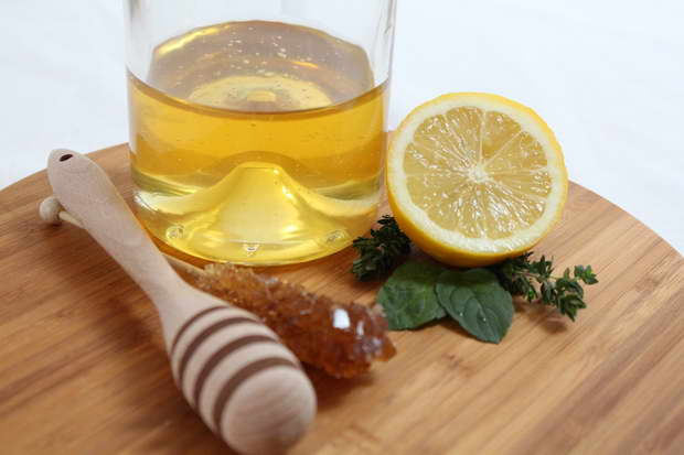 lemon,citrus,fruits,mint,honey,yellow color,food,healthy food,natural food,