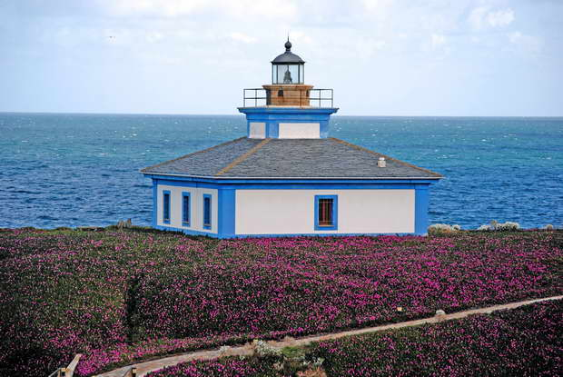 lighthouse architecture design,blue and white house design,lighthouse surrounded by flowers,home by the sea,oceanside living,
