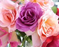 romantic,color of love,wedding decorations,flower bouquet,flower bouquet ideas,flower bouquet designs,wedding flowers,floral wedding decorations,rose wedding,wedding bouquet,wedding bouquet ideas,romantic flowers,romantic rose,rose meaning,valentines day,