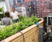 spoga gafa köln 2019,best trade fairs in europe,small city garden design,growing plants on a balcony,home garden images,