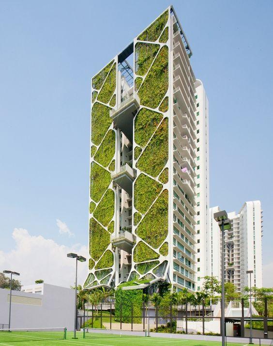 The Tree House In Bukit Timah, Singapore