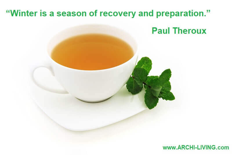 paul theroux winter quotes,winter drinks and food motivational quotes,best winter quotes sayings,a cup of mint tea,winter hot drinks ideas,